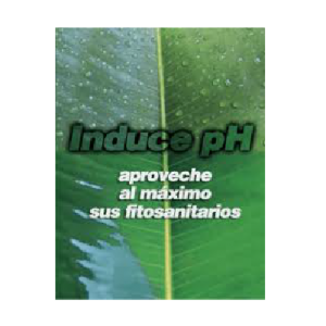 Induce PH